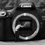 【一眼カメラ】APS-Cとフルサイズのイメージセンサーの違いによる3つの差を説明!