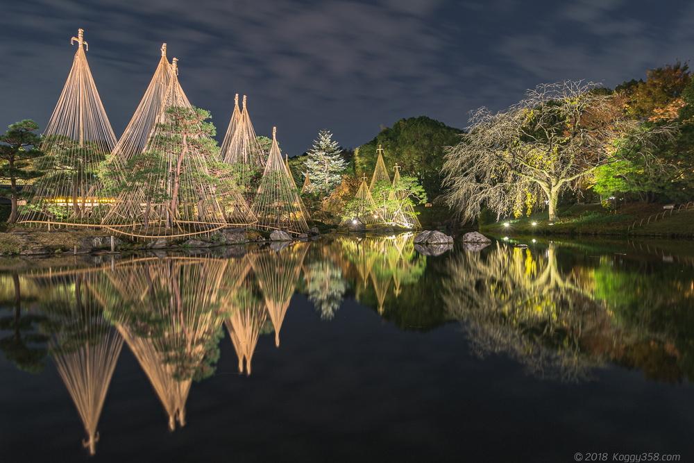 愛知県唯一!白鳥庭園の紅葉ライトアップと雪吊りのリフレクションを撮影