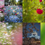 春(3月,4月,5月)が見頃の撮りたい花15被写体!【愛知,岐阜,三重近郊の撮影スポット情報アリ】