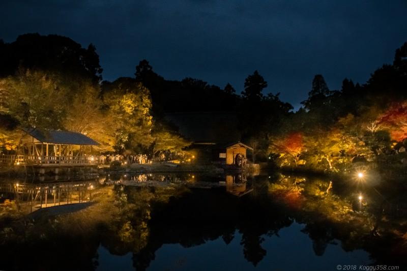 東山動植物園の紅葉ライトアップ