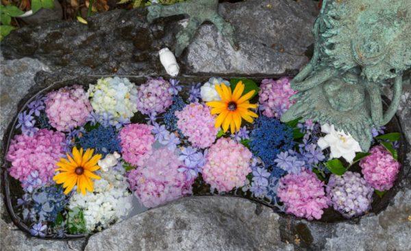 大須の三輪神社の手水舎はあじさいとウサギが可愛いインスタ映え神社