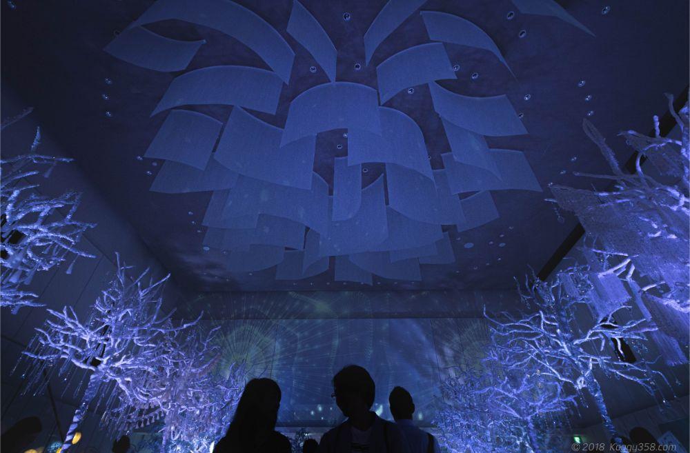 岐阜モノリスの純白の森ナイトミュージアムで撮影!【全国のモノリス・アマンダンの開催日情報とインスタ映え作例68カットあり】