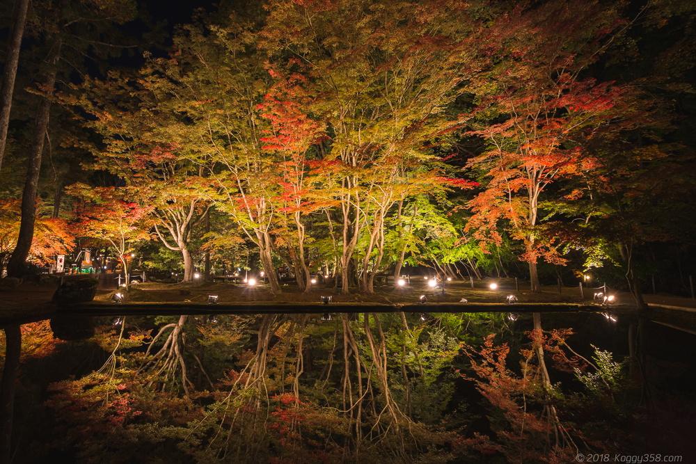 曽木公園で紅葉のリフレクションを撮影【ライトアップ情報あり】