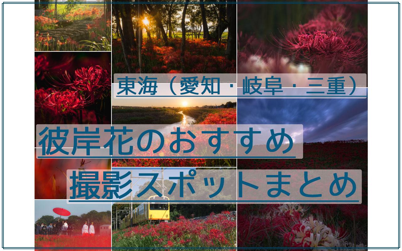 【おすすめ11か所】愛知・岐阜・三重の彼岸花の撮影スポット・見ごろまとめ