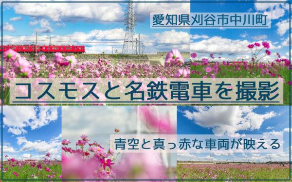 爽やか!刈谷市中川町のコスモス畑と名鉄電車を快晴の青空の下で撮影