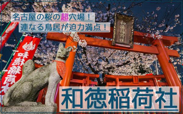 連なる鳥居が迫力満点!和徳稲荷社の夜桜夜景を撮影【名古屋の超穴場】