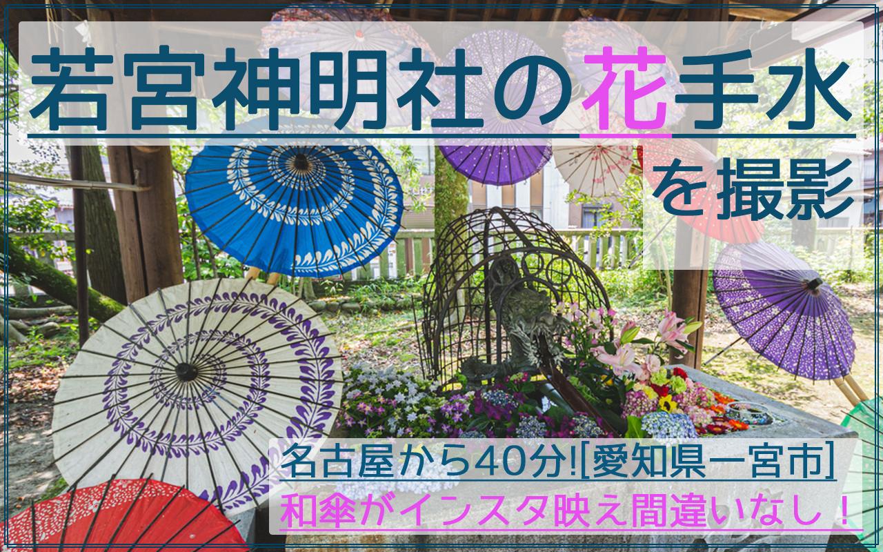 和傘が映える!一宮市の若宮神明社であじさい花手水を撮影|駐車場やアクセス情報アリ!