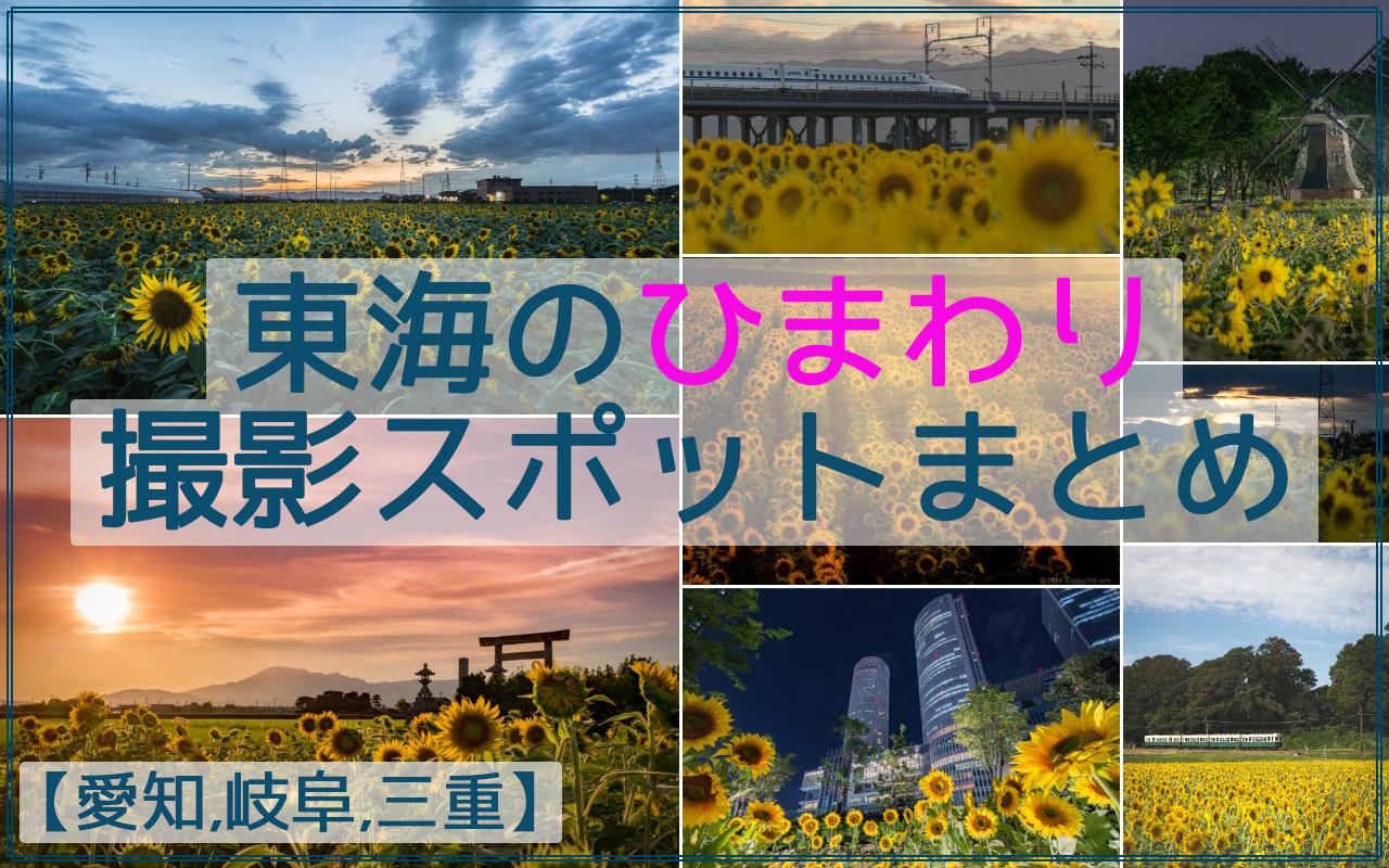東海のひまわりの撮影スポット26か所まとめ【愛知,岐阜,三重】